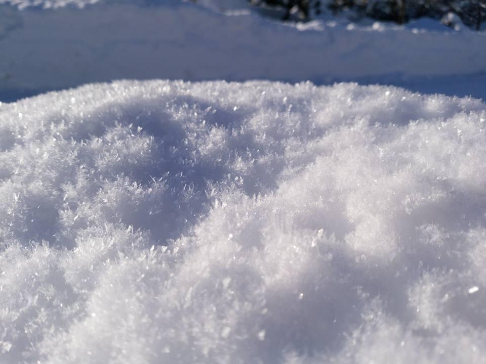 弘前ぐらし キラキラ輝く一面の雪